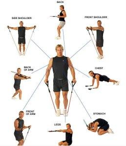 Комплекс упражнений с эспандером.