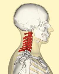 Ушиб спинного мозга шейного отдела